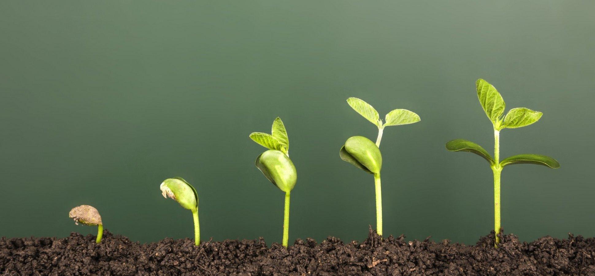 Growth Hacking vs. Behavioural Design