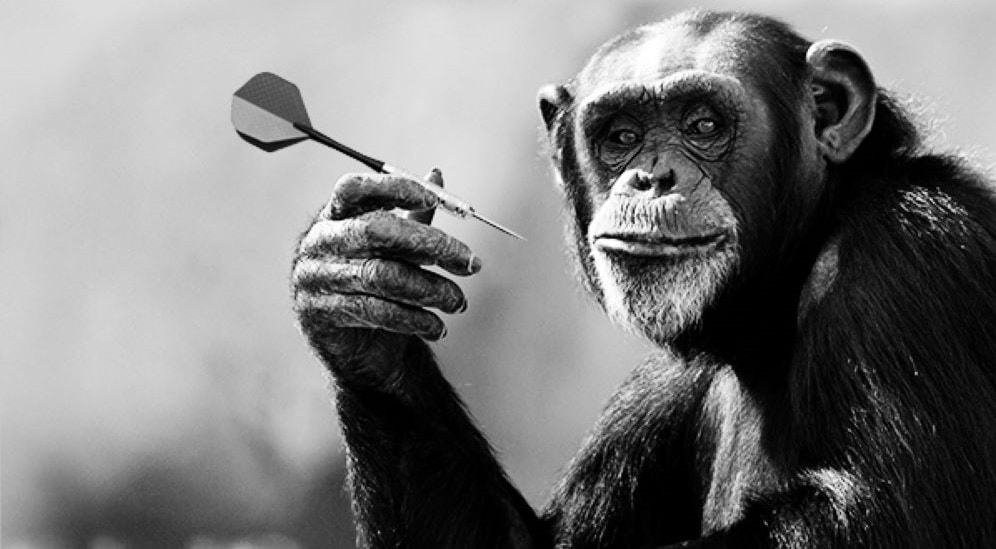 Dart Throwing Chimp